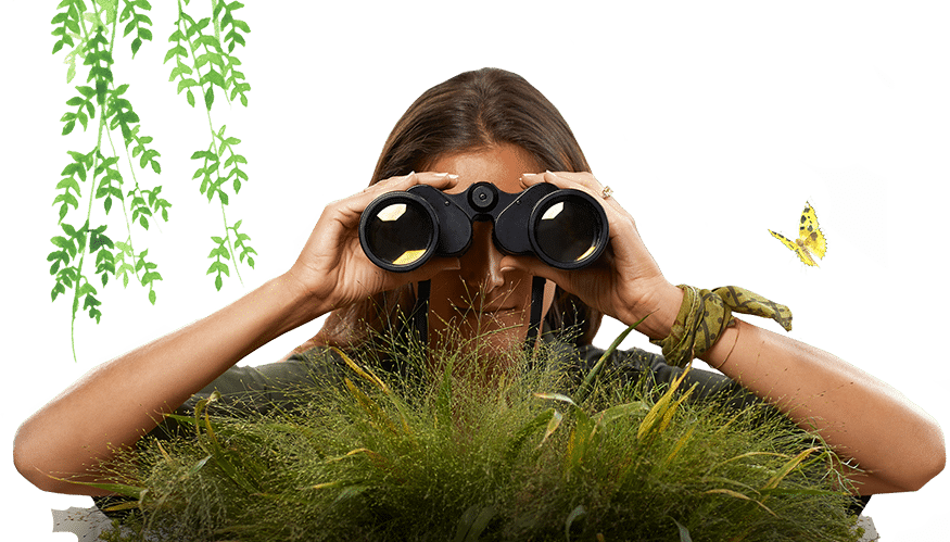 about us clementina binoculars
